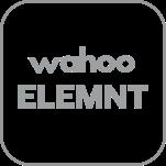 App & Connectivity Wahoo Element Logo
